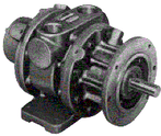 Gast 16AM-FRV-252 Air Motor 9.5 HP, 6 Vane, REV