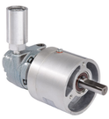 Gast 1AM-NRV-56-GR11 Gear Motor